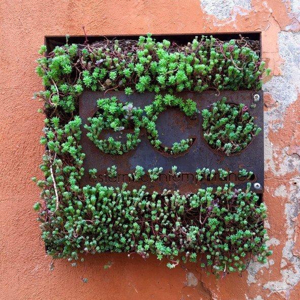 Eco esternocontemporaneo, studio di progettazione del verde e del paesaggio